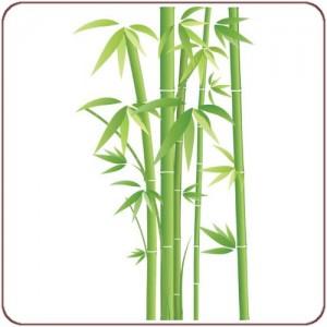 bambous feng shui