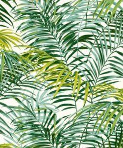 Saga Jardin Feng shui #3: les plantes à bannir